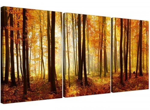 set of 3 forest woodland trees canvas prints uk hallway 3243