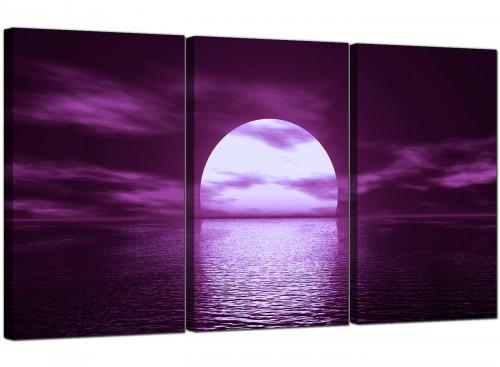 Purple Sunset Ocean Sky Landscape Canvas