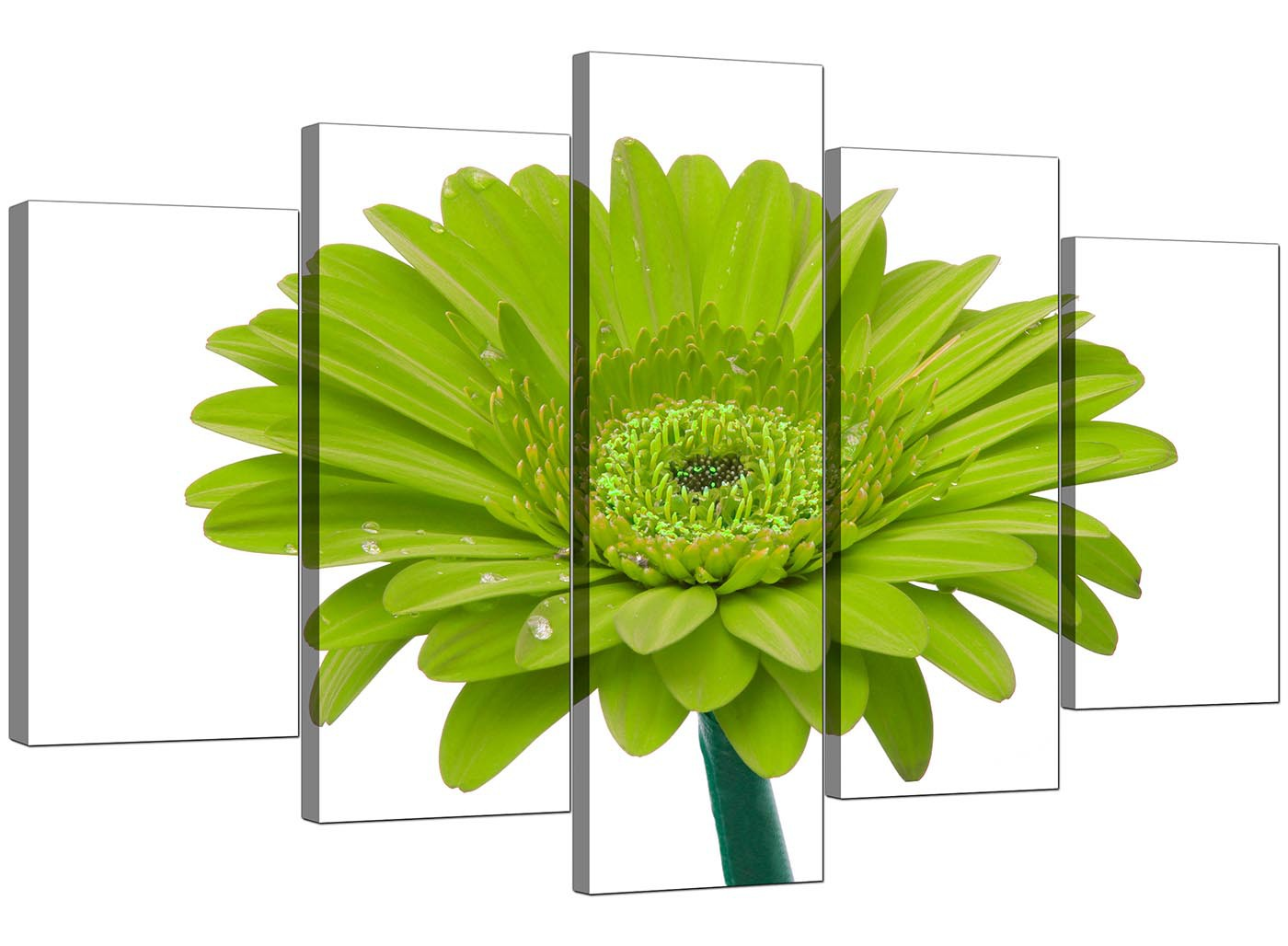 Extra Large Flower Canvas Wall Art Five Part In Lime Green