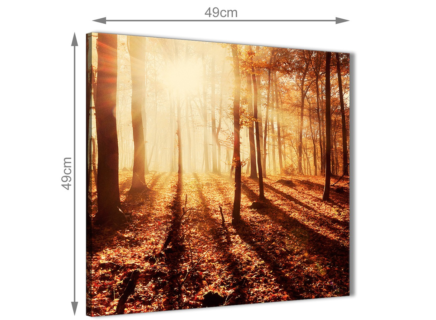 Canvas Pictures Autumn Leaves Forest Scenic Landscapes - Trees ...