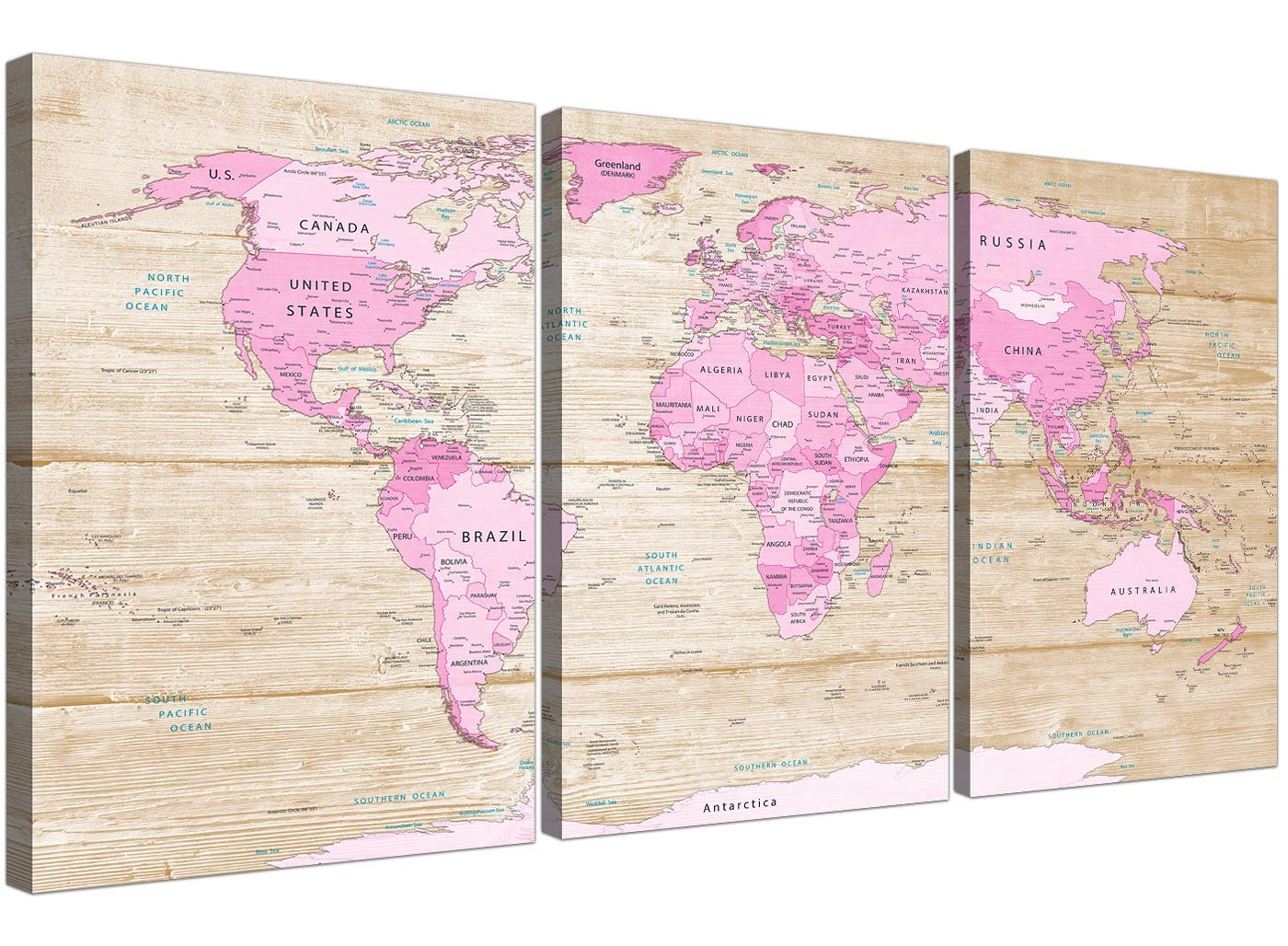 Large Pink Cream Map Of World Atlas Canvas Wall Art Print