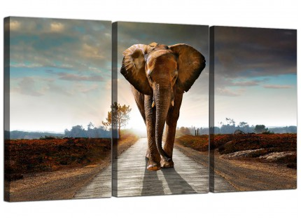 Modern African Elephant - Landscape Canvas - 3 Set - 125cm - 3209
