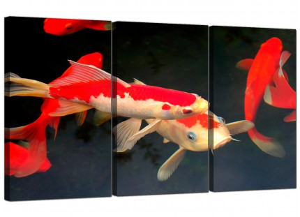 Modern Japanese Koi Carp Fish Pond Canvas - Set of 3 - 125cm - 3094