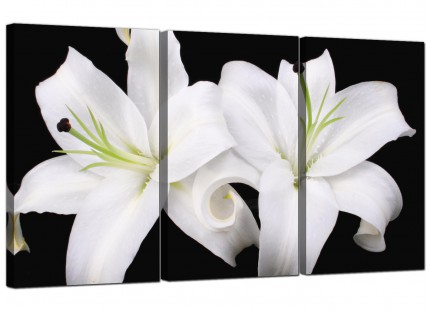 Modern Black White Lily Flower Floral Canvas - 3 Set - 125cm - 3128