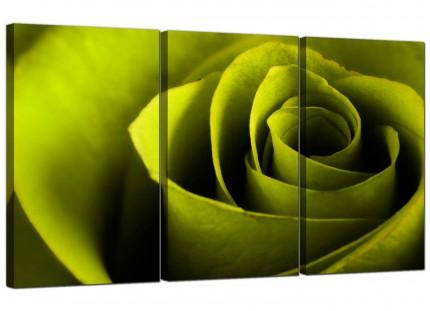 Modern Lime Green Rose Petal Flower Floral Canvas - 3 Piece - 125cm - 3110