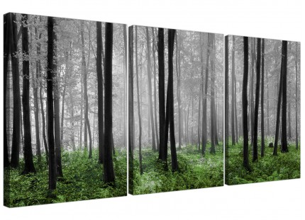Modern Black White Green Grey Forest Woodland Trees Canvas - 3 Set 125cm - 3239