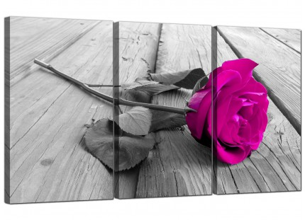 Modern Pink Rose Grey Black White Flower Floral Canvas - 3 Set - 125cm - 3036