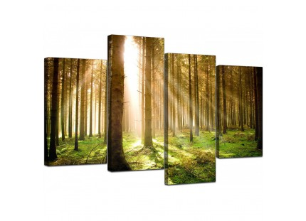Modern Green Forest Woodland Sunlight Trees Canvas