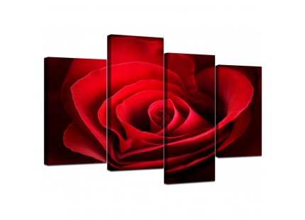 Modern Red Rose Heart Petals Flower Floral Canvas