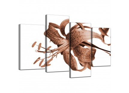 Brown Tiger Lily Flower on White Floral Canvas