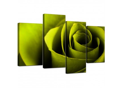Lime Green Rose Petal Flower Floral Modern Canvas Art