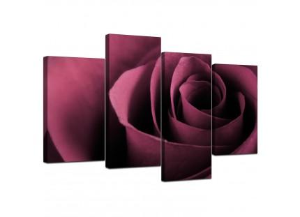 Plum Coloured Rose Petal Flower Floral Modern Canvas Art