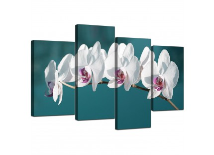 Teal White Orchid Flower Branch Floral Canvas