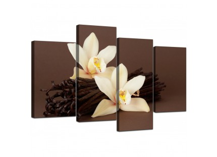 Brown and Cream Flower Floral Canvas