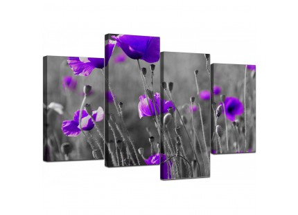 Large Purple Poppy Grey Black White Flower Floral Canvas Art