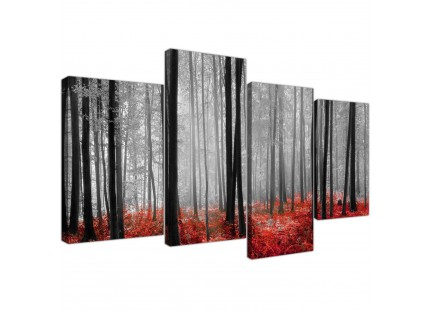 Black White Red Grey Forest Woodland Trees Canvas