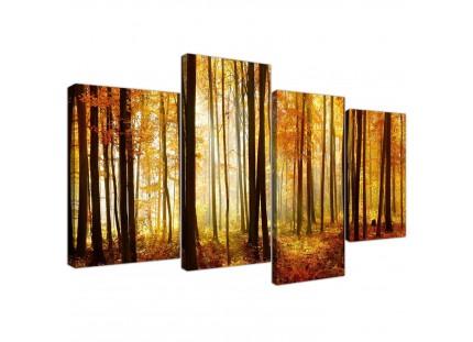 Orange Autumn Forest Scene Woodland Trees Canvas