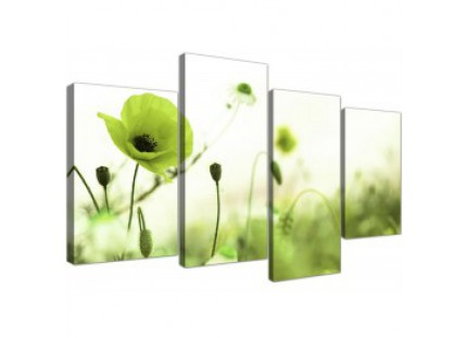 Large Lime Green White Poppy Field Flowers Floral Canvas Art