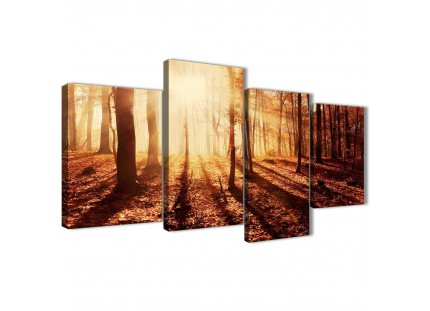 Trees in Autumn Orange Leaves Forest Scene Landscapes Canvas Wall Art