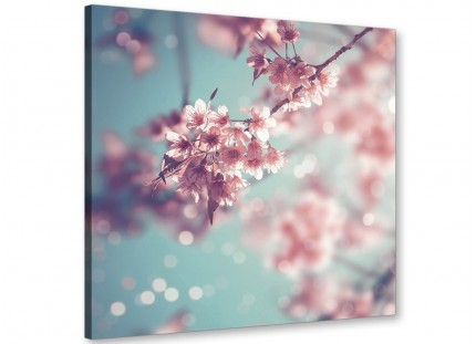 Duck Egg Blue Pink Shabby Chic Blossom Floral Canvas Modern 49cm Square - 1s280s