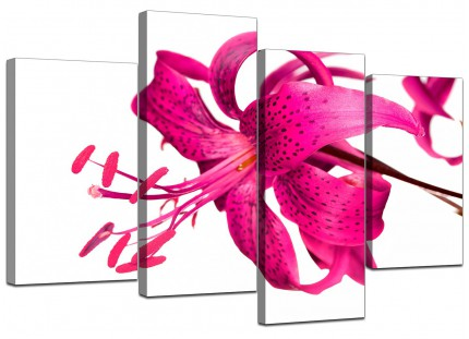 Pink Tiger Lily Flower on White Floral Canvas - Multi 4 Set - 130cm - 4053
