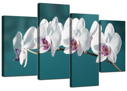 Teal White Orchid Flower Branch Floral Canvas - Split Set of 4 - 130cm - 4115
