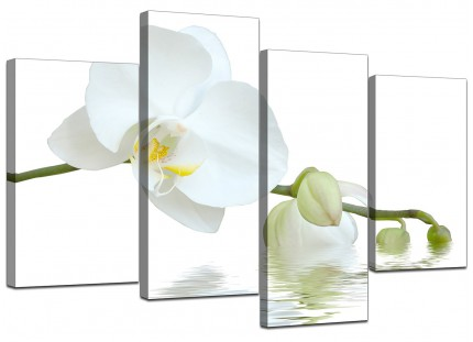 White Orchid Flower Modern Fresh Floral Canvas - Split Set of 4 - 130cm - 4134