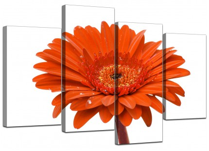 Orange White Gerbera Daisy Flower Floral Canvas - Multi Set of 4 - 130cm - 4140