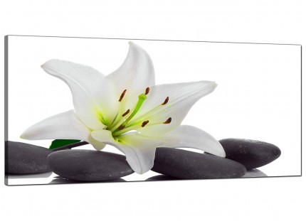 Large Black White Grey Lily Flower Stones Floral Canvas Art - 120cm - 1024