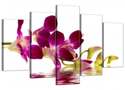 Purple Green White Orchid Flower Floral XL Canvas - 5 Part - 160cm - 5021