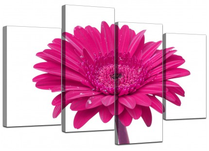 Pink White Gerbera Daisy Flower Floral Canvas - Multi 4 Set - 130cm - 4099