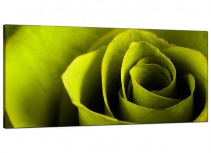 Large Lime Green Rose Petal Flower Floral Modern Canvas Art - 120cm - 1110