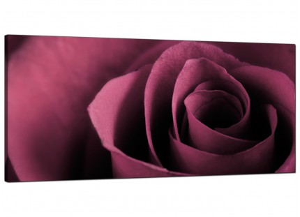 Large Plum Coloured Rose Petal Flower Floral Modern Canvas Art - 120cm - 1111