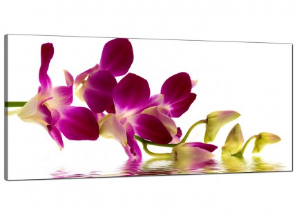 Large Purple Green White Orchid Flower Floral Modern Canvas Art - 120cm - 1021