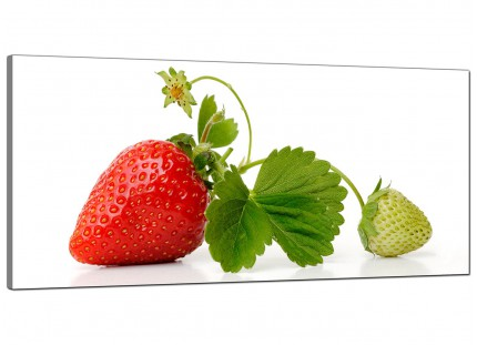 Large Red Green Strawberry Modern Fresh Kitchen Canvas Art - 120cm - 1074