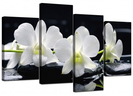 Black and White Orchid Flower Floral Canvas - Split 4 Set - 130cm - 4051