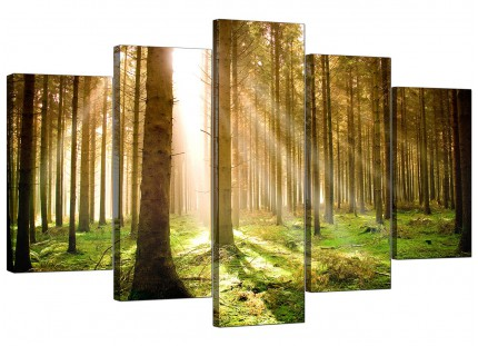 Extra Large Green Forest Woodland Sunlight Trees Canvas - 5 Part - 160cm - 5042