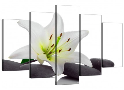 Black White Grey Lily Flower Stones Floral XL Canvas - 5 Set - 160cm - 5024