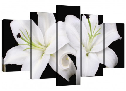 Extra Large Black White Lily Flower Floral Canvas - Set of 5 - 160cm - 5128