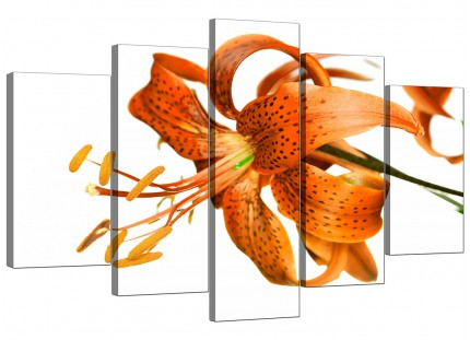Extra Large Orange White Tiger Lily Flower Floral Canvas - 5 Part - 160cm - 5142