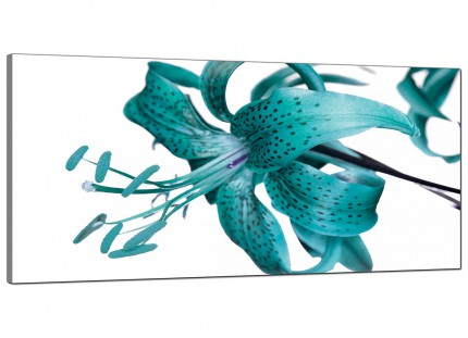 Large Teal Tiger Lily Flower on White Floral Modern Canvas Art - 120cm - 1054