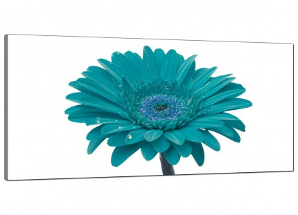Large Teal White Gerbera Daisy Flower Floral Modern Canvas Art - 120cm - 1114