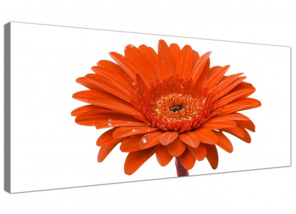 Large Orange White Gerbera Daisy Flower Floral Modern Canvas Art - 120cm - 1140