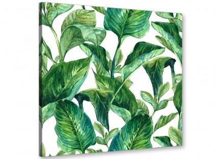 Green Palm Tropical Banana Leaves Canvas Wall Art Print - Modern 49cm Square - 1s324s