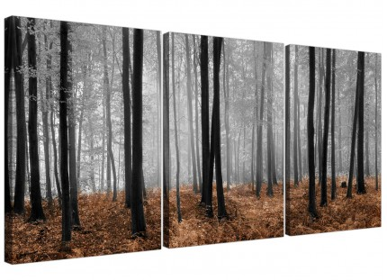 Modern Black White Brown Grey Forest Woodland Trees Canvas - 3 Set 125cm - 3238