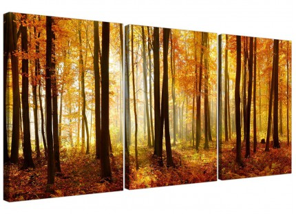 Modern Orange Autumn Forest Scene Woodland Trees Canvas - 3 Panel - 125cm - 3243