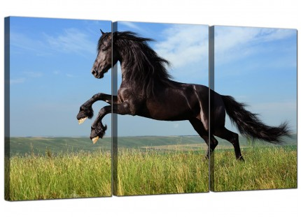 Modern Black Jumping Horse in Field Canvas - 3 Part - 125cm - 3129