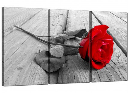Modern Red Rose Grey Black White Flower Floral Canvas - 3 Part - 125cm - 3005