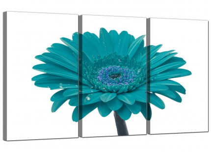 Modern Teal White Gerbera Daisy Flower Floral Canvas - Set of 3 - 125cm - 3114