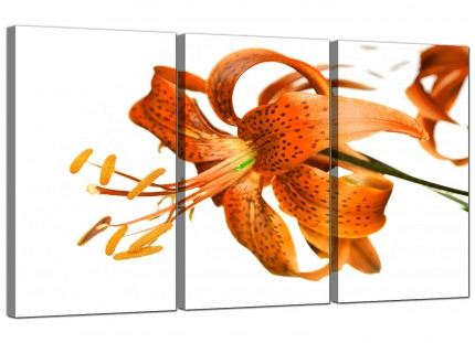 Modern Orange White Tiger Lily Flower Floral Canvas - 3 Panel - 125cm - 3142